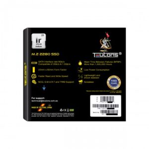 TEUTONS IRIDIUM 256GB 2280 M.2 SSD