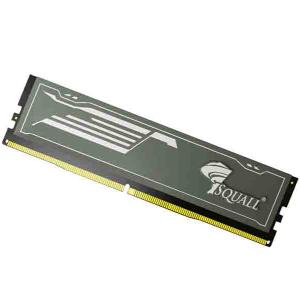 Squall 8GB DDR4 Desktop Ram